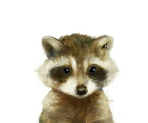 art, raccoon, and draw image