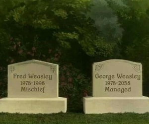 Fred, george, and harry potter image