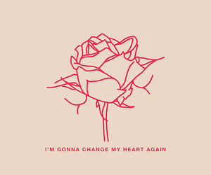 rose, quotes, and heart image