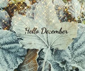 christmas, Christmas time, and cold image
