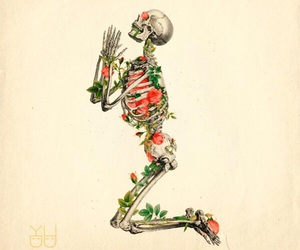 colors, skeleton, and skulls image
