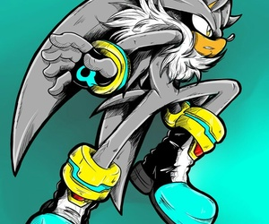 silver and sonic image