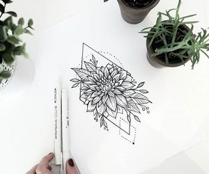 flower, sketch, and tattoo image