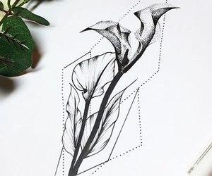 black, flower, and sketch image
