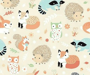 background, animal, and fox image
