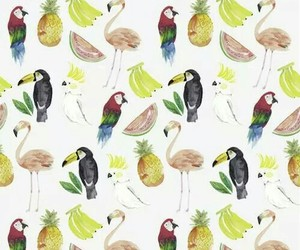 background, bird, and wallpaper image