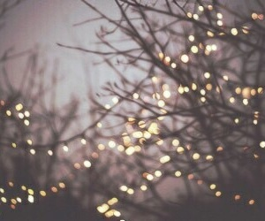 light, christmas, and tree image
