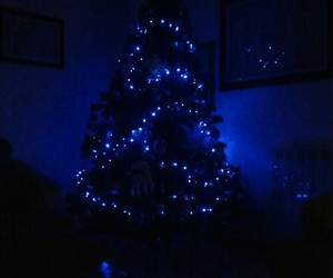 christmastree, love, and winter2015 image