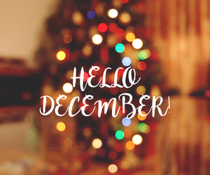 blurred, christmas, and december image
