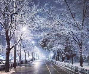 beautiful, bulgaria, and christmas image