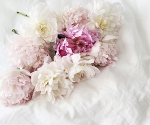 bouquet, chic, and peony image