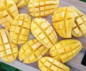 fruit and mangue image