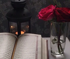 rose, islam, and quran image