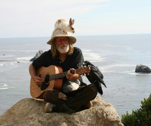 animals, peace, and guitar image