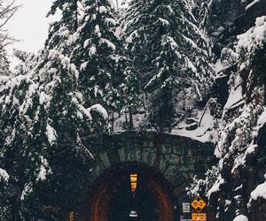 bridge, christmas, and photography image