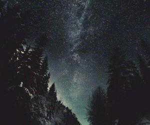 estrellas, Noche, and bosque image