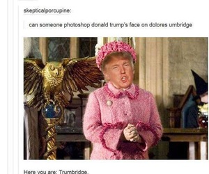 harry potter, funny, and lol image