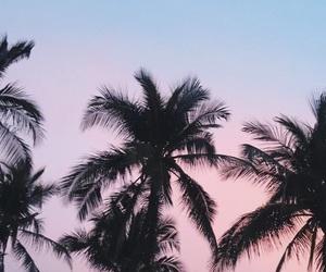 beach, moon, and palmeras image