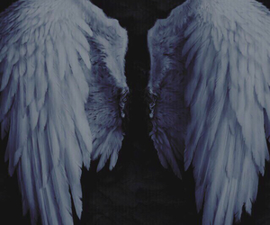 give me love, wings, and ed sheeran image