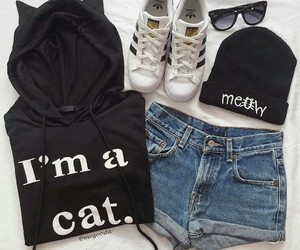 fashion, clothes, and cat image
