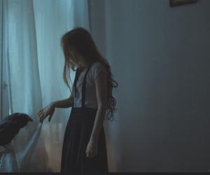 girl, raven, and crow image