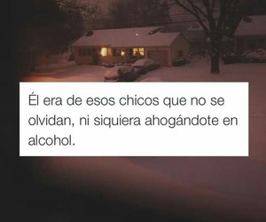 frases, love, and alcohol image