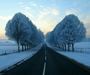 winter snow and ❄ image