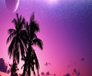 palm tree, pink, and pretty image