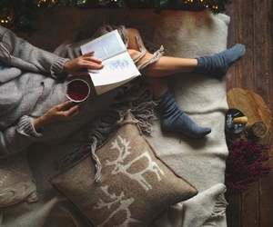 christmas, book, and cozy image