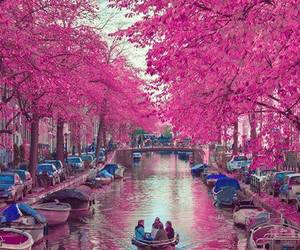 amsterdam, beautiful, and nature image