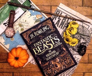 book, newt scamander, and books image