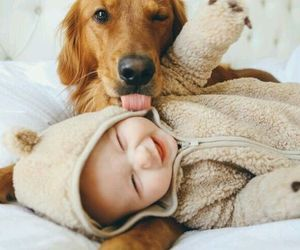 baby, dog, and cute image