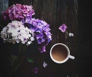 coffee, cup, and photo image