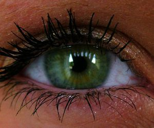 eyes, golden, and green image