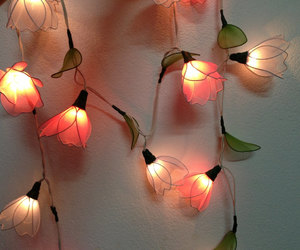 fairy lights flowers image