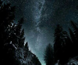 mountains, night, and tree image