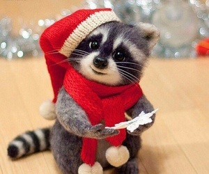 cute, christmas, and animal image