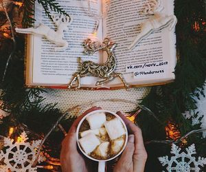 book, christmas, and winter image