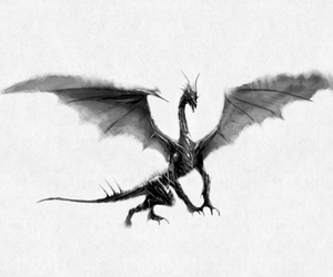 black, black and white, and dragon image
