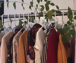 clothes and feed image