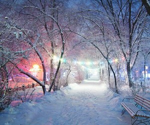 winter, snow, and light image