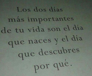 book, frases, and tumblr image