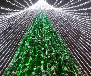 amazing, beautiful, and cristmas image