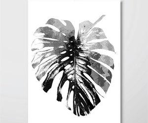 botanical, black and white art, and scandinavian modern image