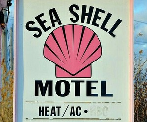 beach, pink, and motel image