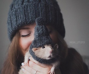 rat, rodent, and snuggles image