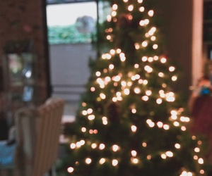winter and christmastree image