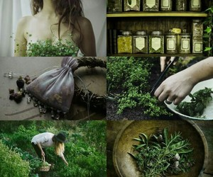witch and green image