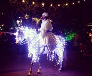 christmas, horse, and light image