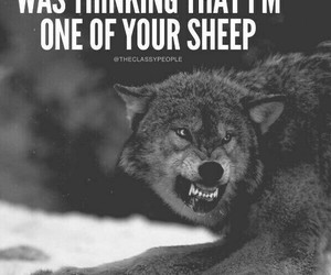 quotes and wolf image